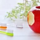 予防歯科の豆知識~咀嚼について~
